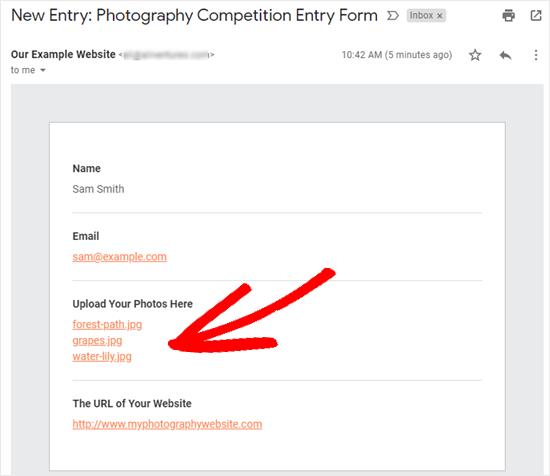 El correo electrónico que recibe con los detalles de la entrada del formulario, incluidos los enlaces de descarga de archivos.
