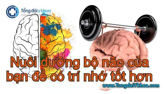 Làm thế nào để nuôi dưỡng bộ não của bạn để có trí nhớ tốt hơn?