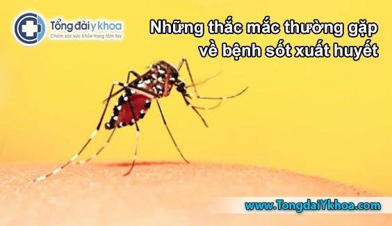 thắc mắc thường gặp bệnh sốt xuất huyết dengue