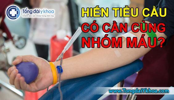 hiến tiểu cầu có cần cùng nhóm máu không