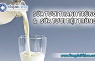 Sữa tươi thanh trùng và sữa tươi tiệt trùng có gì khác nhau?