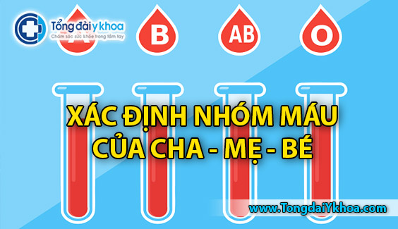 xac dinh nhom mau cua con blood type calculator