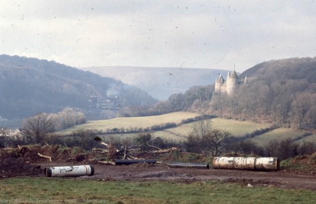 Displaced alium ursinum bulbs in ORS sludge, Tongwynlais reservoir, 4/2/1972