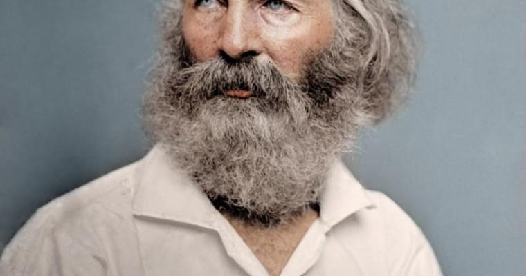 Whitman in color