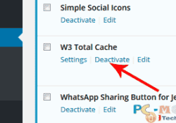 w3-total-cache-deactivate