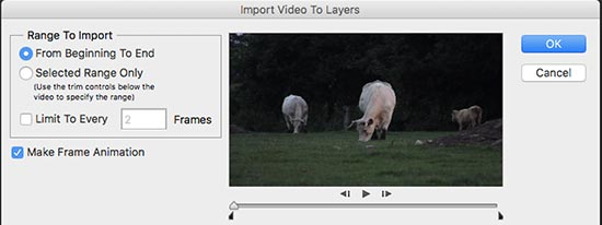 Video to layers import