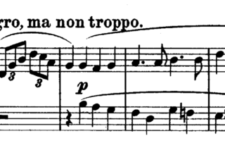 Beethoven: Piano Sonata No.20 G Major Analysis