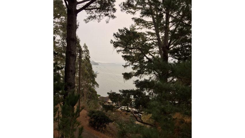 West Marin Knitting Retreat