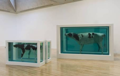 Damien Hirst, Mother and Child Divided, 1993