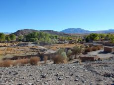 Oase mitten in der Wüste