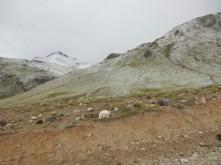 Auf 4.800 m schneit es dann auch schon mal ...