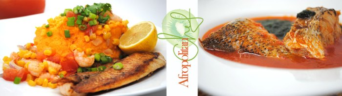 afropolitan chef cookbook
