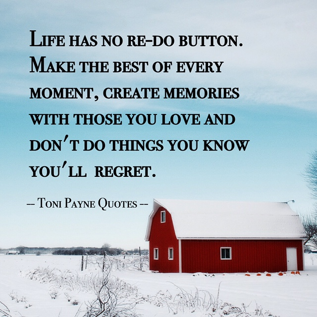 Quote about making the best out of life - Toni Payne Quotes