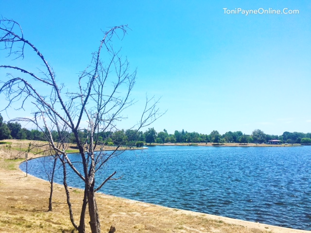 Lake Balboa serene places san fernando valley 2