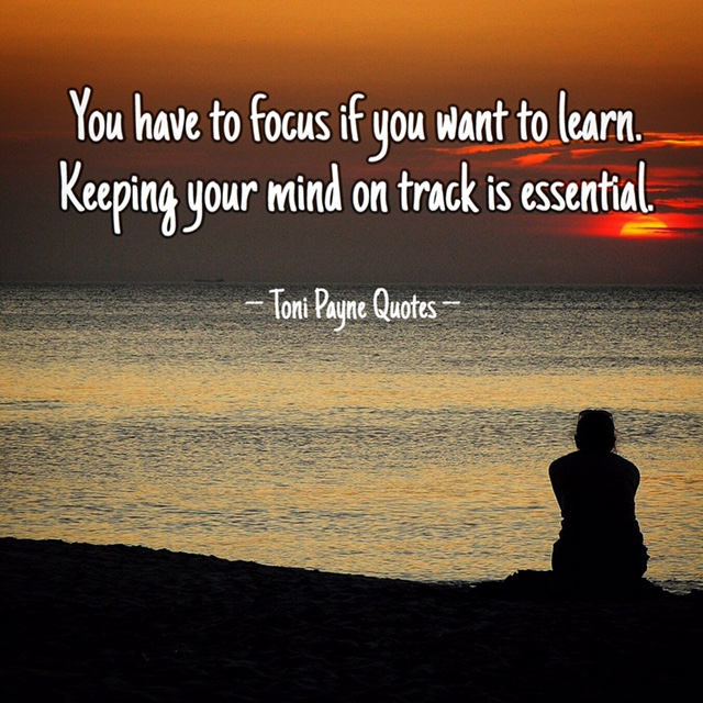 Quote about staying focused and on track to learn