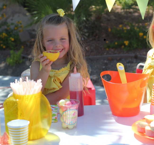Lemonade Stand by Toni Spilsbury The Organized Cook