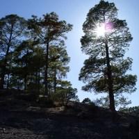 Unos rayos de sol