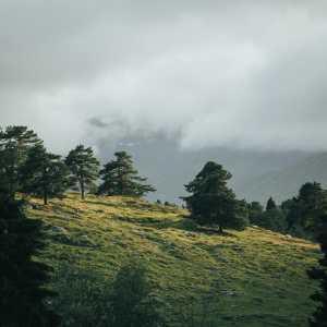Fabulous Fausadalen – When I walk pt. 4