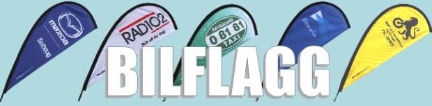 flagg-heading-bilder-650x160pxl-bilflagg
