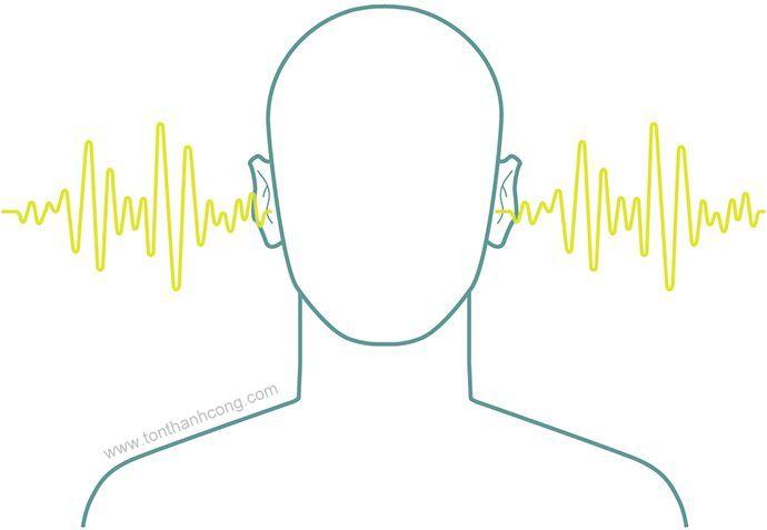 Tôn Nhựa PVC với khả năng cách âm tốt, chống ô nhiễm tiếng ồn