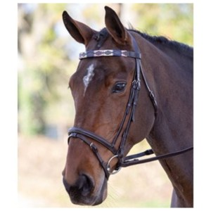 Blenheim Leather Polo Browband Pannerem