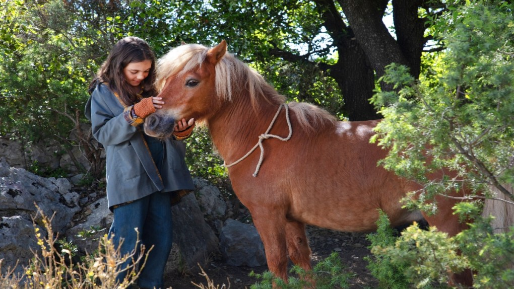 mi amigo pony crítica