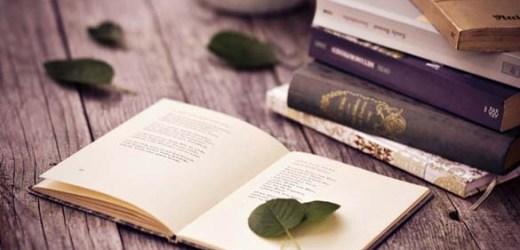 Đi theo kinh tuyến một đời thơ