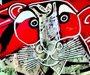 Truyện ngắn: Đầu hổ