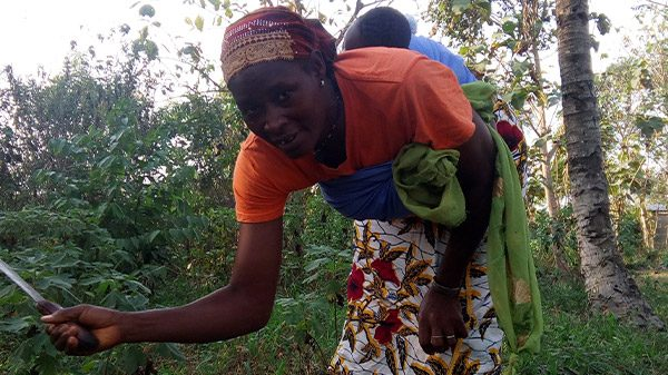 SEEKEWA USES VOUCHERS TO SUPPORT AFRICAN FARM PROJECTS