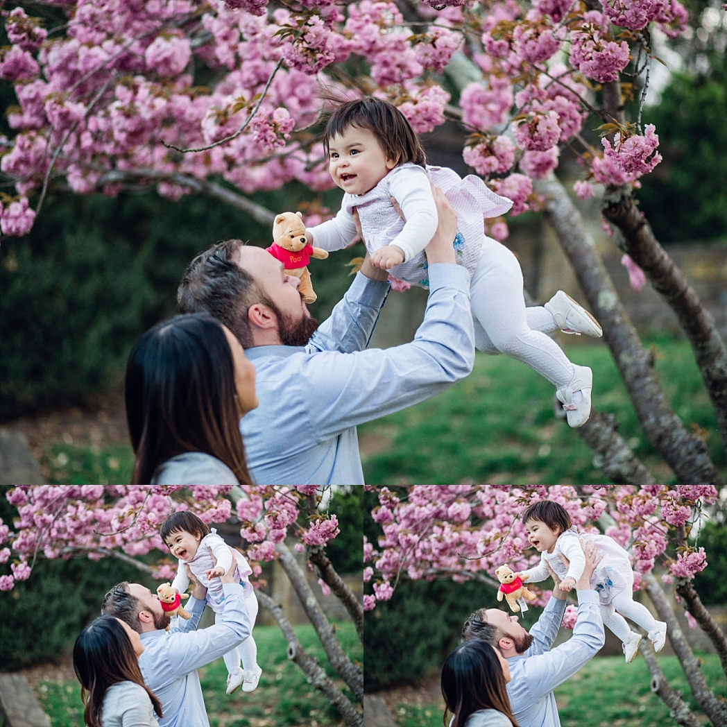 Spring Blossom Tree Session | Bethesda, MD Newborn, Baby and Family Photographer