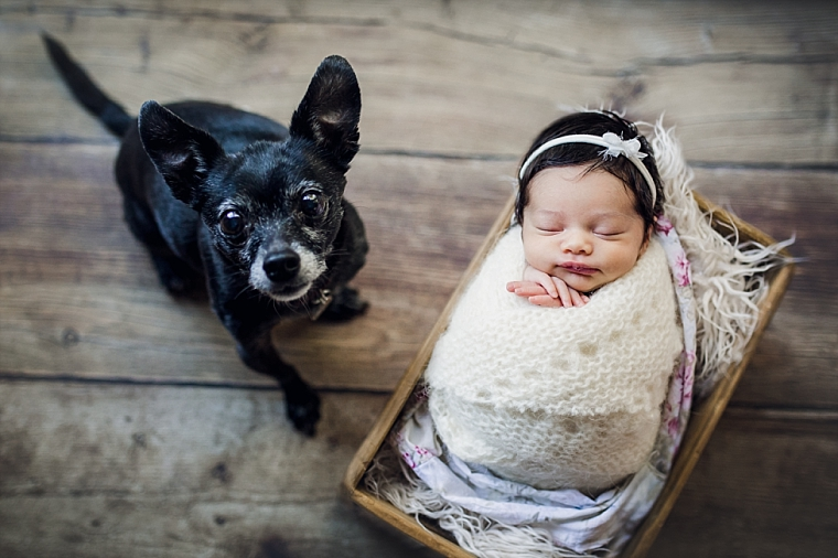In-home Newborn Family Photo Session | Tonya Teran Photography, Washington, DC, NOVA Newborn, Baby, and Family Photographer