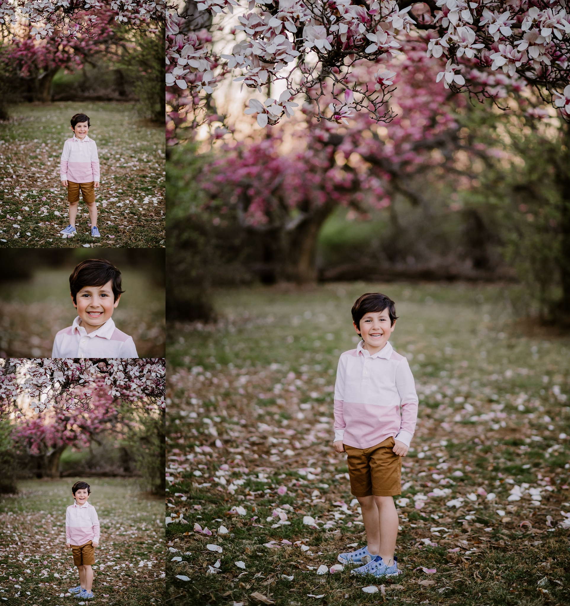 bethesda-md-photographer-spring-blossoms