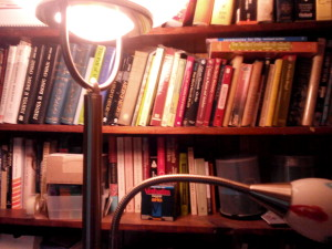 office 1 bookshelf