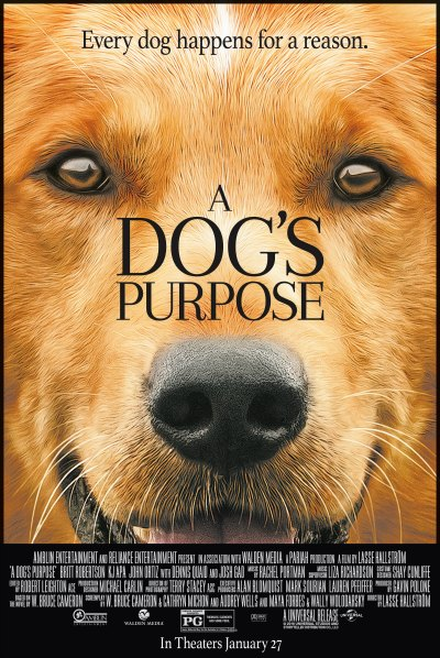 Girl Holding Money Wallpaper A Dog S Purpose A Dog Gone Good Flick The Tony Burgess