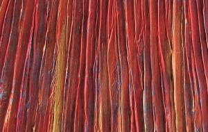Red Suntset (Detail 2)