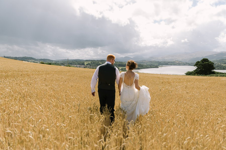 bride and groom in corn field at Bryn Eisteddfod. Get married in North Wales