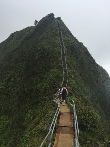 Summit View