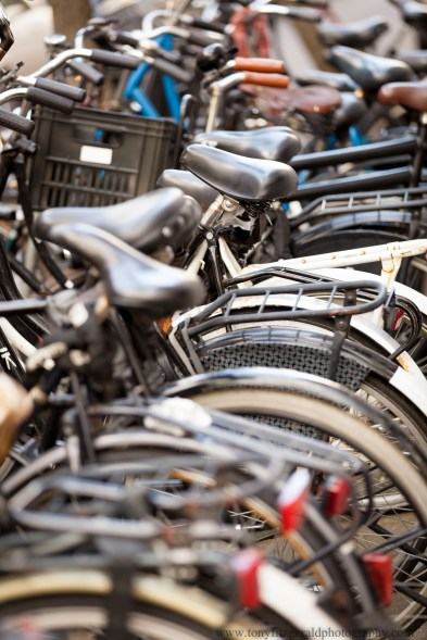bicycles in Amsterdam
