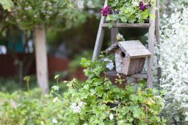 old wooden birdhouse