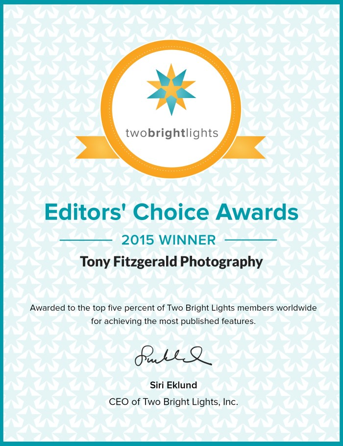 award2015certificate