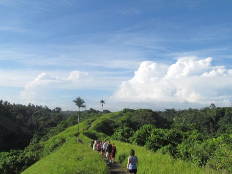 "Hiking the ""Ants Back""- the Campuan Ridge in Ubud one morning"