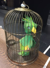 A second parrot (with folded wings) for the scenes after the parrot was caught.