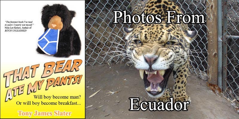 Ecuador Photo Gallery