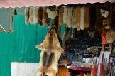 Terracota-warriors-Dog-fur