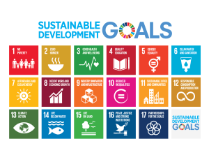 Sustainable Development Goals Stories