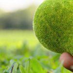 5 maneras de hacer tus regalos navideños más amables para el medio ambiente