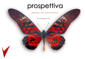 Prospettiva celebrates one year since its evolution to the new brand
