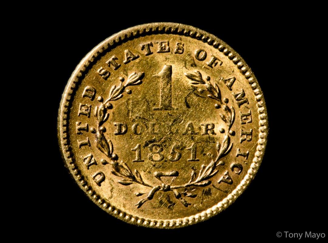 Gold Dollar by Tony Mayo