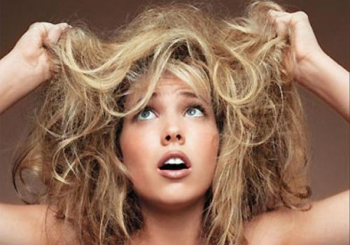 Damaged Hair What To Use