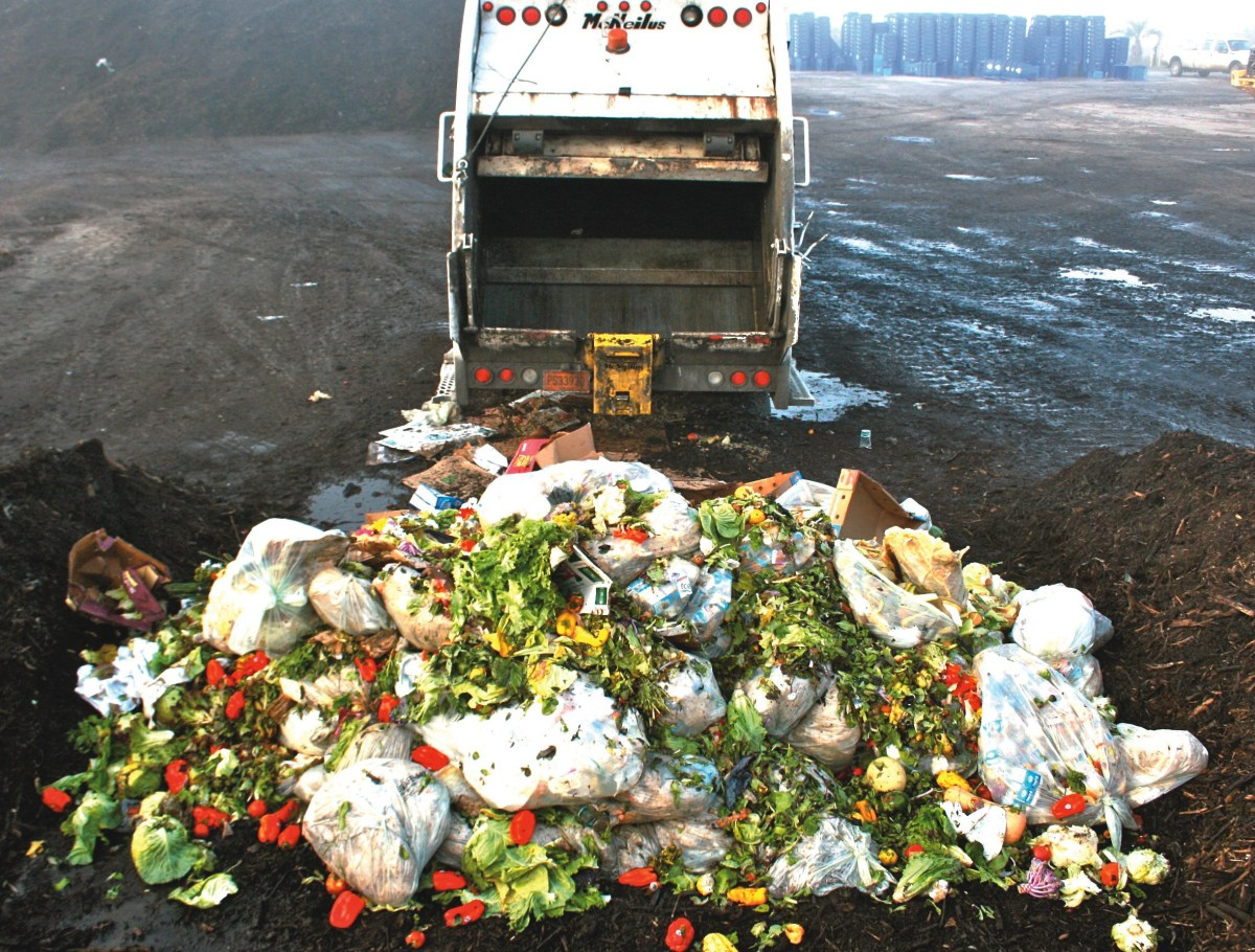 Overconsumption & Food Waste In America, Now What?